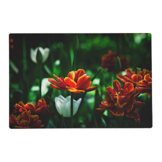 Red Tulip - His Majesty the King Laminated Placemat