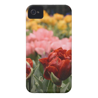 Red Tulip iPhone 4 Cover