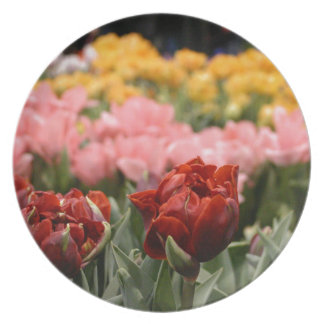 Red Tulip Party Plate
