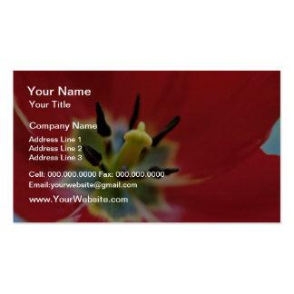Red Tulip Stamen Closeup flowers Business Card Template