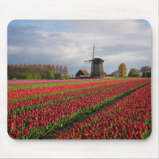 Red tulips and a windmill mouse pad