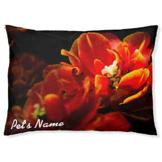 Red tulips dark background pet bed