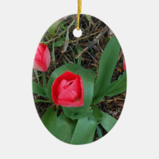 Red Tulips Ceramic Oval Ornament