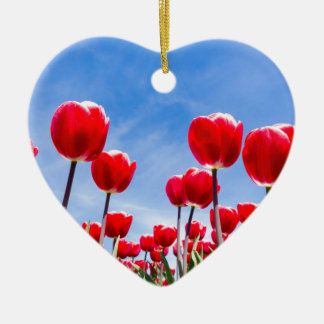 Red tulips field from below with blue sky ceramic heart decoration