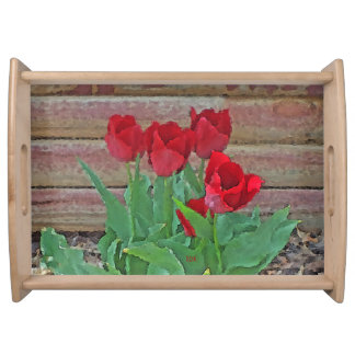 Red Tulips Flowers Petals Bloom in their Prime Food Trays
