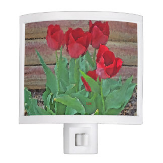 Red Tulips Flowers Petals Bloom in their Prime Night Lite
