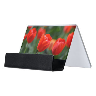 Red Tulips in the Garden Desk Business Card Holder