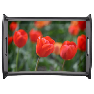 Red Tulips in the Garden Serving Tray
