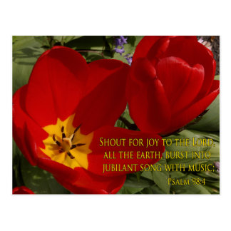 red tulips shout - psalm 98:4 postcard