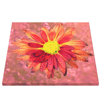 red wet flower canvas print