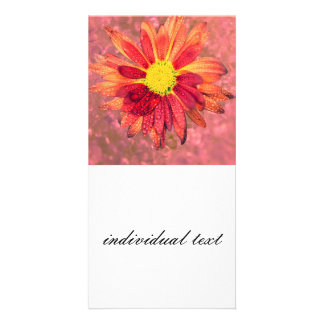 red wet flower personalized photo card