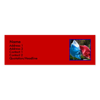 Red White and Blue balloon skinny business cards