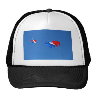 Red, White, And Blue Kite Trucker Hat