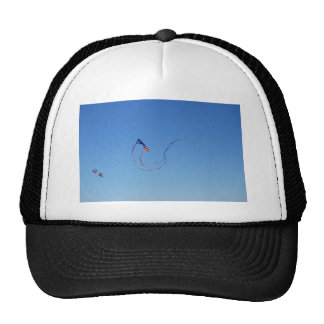 Red, White, and Blue Kite Mesh Hats