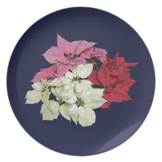 RED WHITE AND PINK POINSETTIAS PLATE