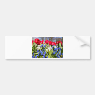 Red white blue flowers in spring season bumper sticker