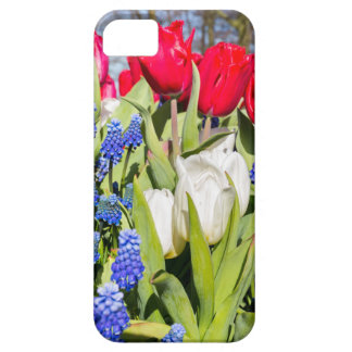 Red white blue flowers in spring season iPhone 5 cover
