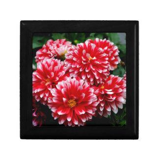 Red & White Dahlias Gift Box