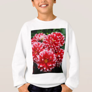 Red & White Dahlias Sweatshirt