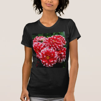 Red & White Dahlias T-Shirt