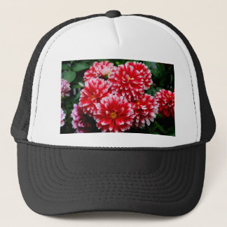 Red & White Dahlias Trucker Hat