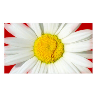 Red & White Daisy Wedding Gift Registry Cards Business Card