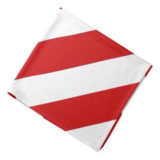 Red White NC Striped Bandana