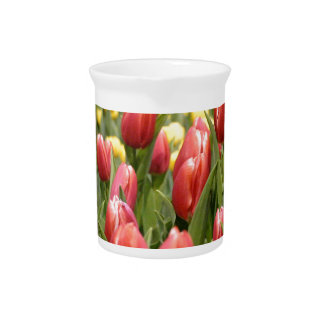 Red White Tulips Drink Pitcher