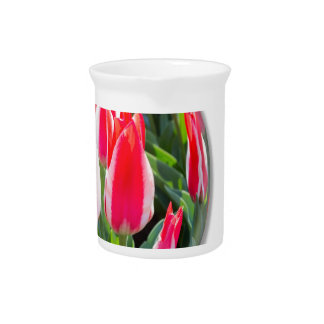 Red white tulips in glass sphere on white beverage pitcher