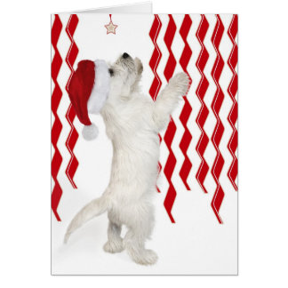 Red White Zigzags Westie Pup Christmas Card
