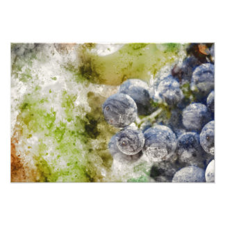 Red Wine Grapes in the Vineyard Art Photo