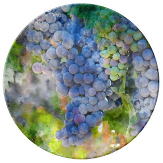 Red Wine Grapes in the Vineyard Plate