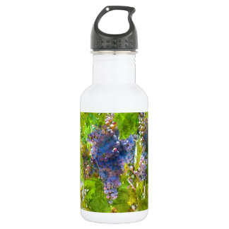 Red Wine Grapes on the Vine 532 Ml Water Bottle