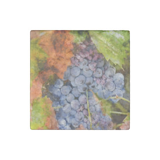 Red Wine Grapes on the Vine Stone Magnet