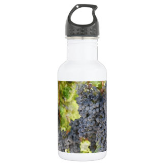 Red Wine Grapes on Vine 532 Ml Water Bottle