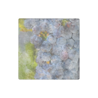 Red Wine Grapes on Vine Stone Magnet