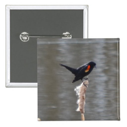 Red Wing Black Bird Square Button