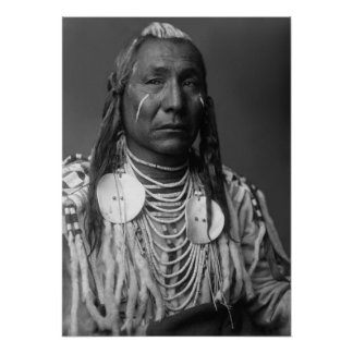Red Wing (Crow Native American Man) Print