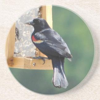Red-Winged Blackbird on a Bird Feeder Coaster