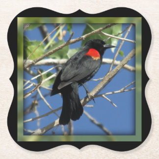 Red-winged Blackbird Paper Coaster