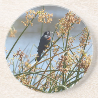Red-winged blackbird round coaster