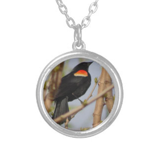 Red-winged Blackbird Silver Plated Necklace