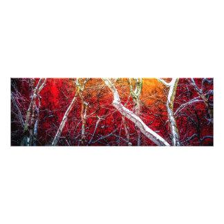 Red winter night art photo