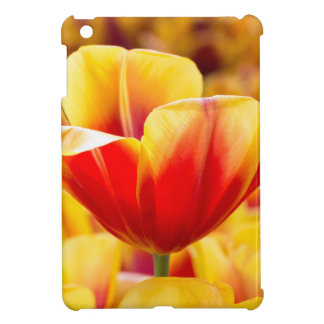 Red with yellow tulip in flowers field cover for the iPad mini