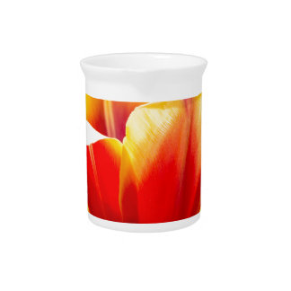 Red with yellow tulip in flowers field pitcher