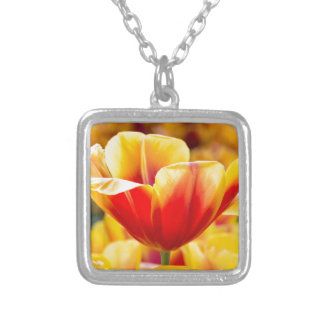 Red with yellow tulip in flowers field silver plated necklace