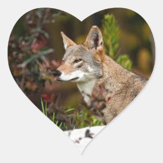 Red Wolf Heart Sticker