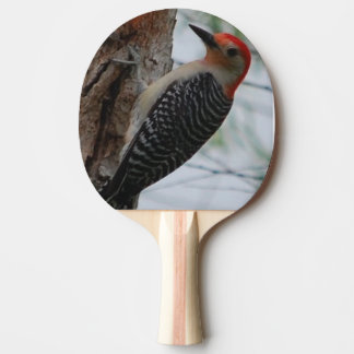 Red Woodpecker, Ping Pong Paddle, Red Rubber Back
