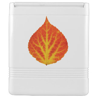 Red & Yellow Aspen Leaf #10 Cooler