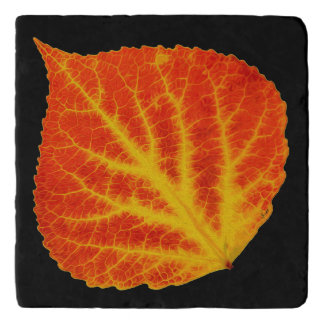 Red & Yellow Aspen Leaf #10 Trivet